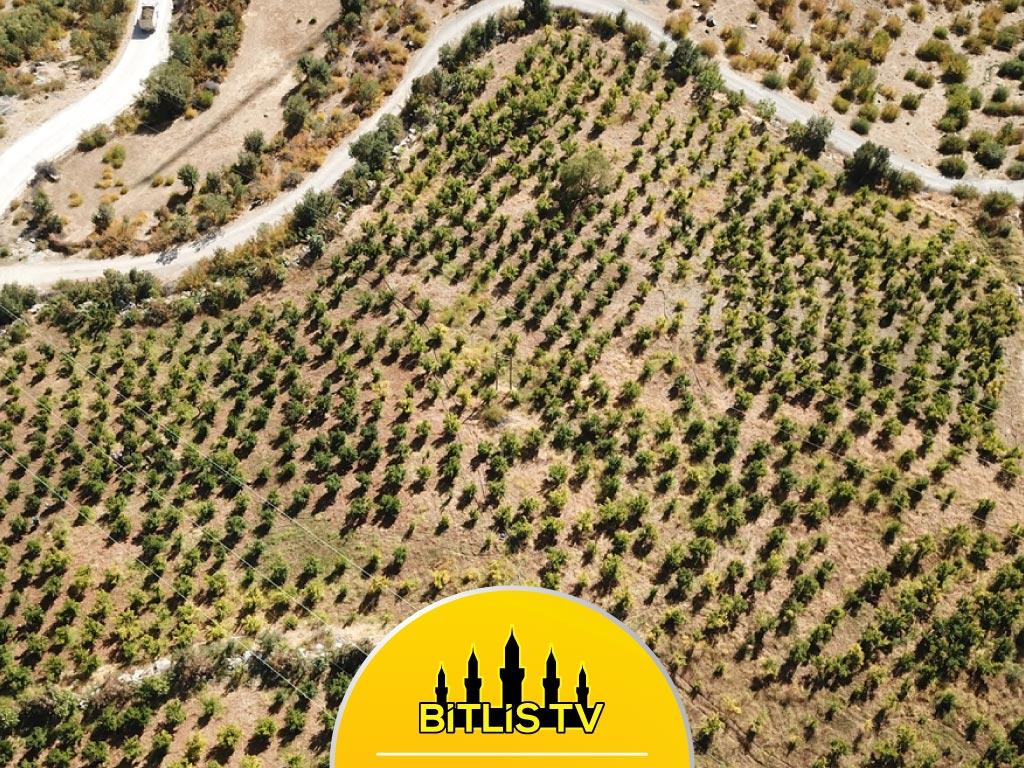 Bitlis'e Yerleşerek Kurduğu Nar Bahçesiyle Örnek Oldu
